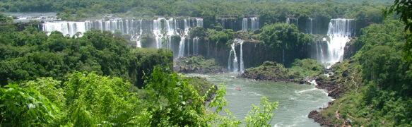 FORESTA AMAZZONICA (SUD AMERICA)